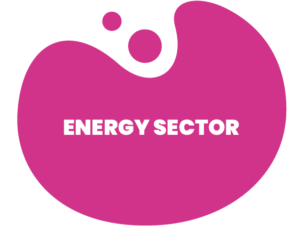 We are specialiced in the demanding needs of the energy sector